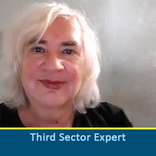 Third Sector Expert